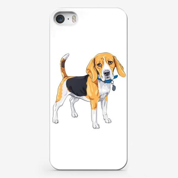 Чехол iPhone «собака породы бигль»