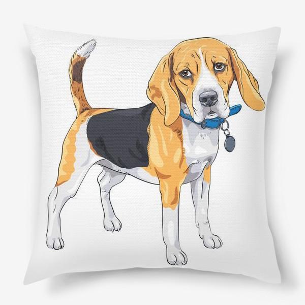 Подушка «собака породы бигль»