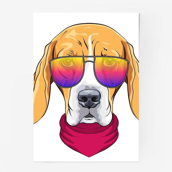 Постер «бигль в очках»