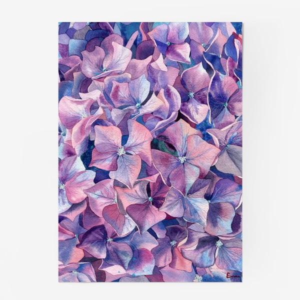 Постер «Фиолетовая гортензия»