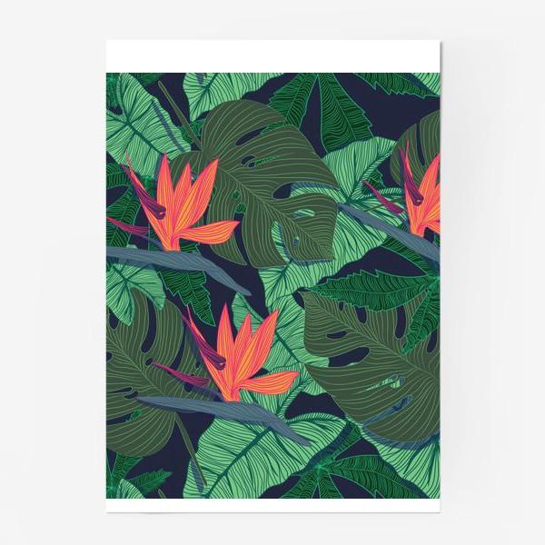 Постер «jungle»