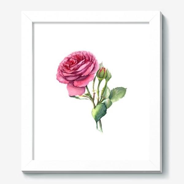 Картина «Роза с бутонами»