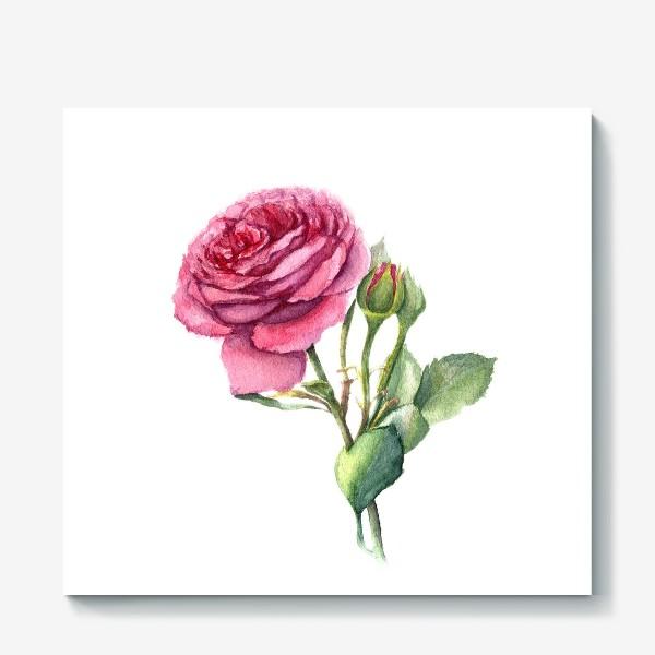 Холст «Роза с бутонами»
