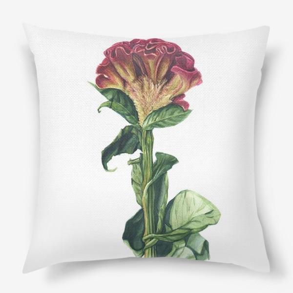 Подушка «Цветок целозия»