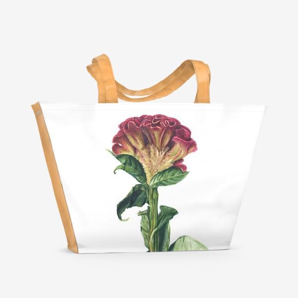 Пляжная сумка «Цветок целозия»