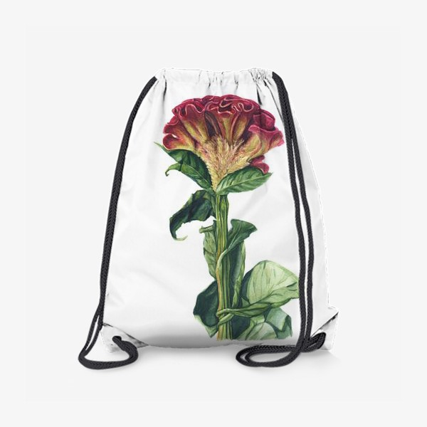 Рюкзак «Цветок целозия»