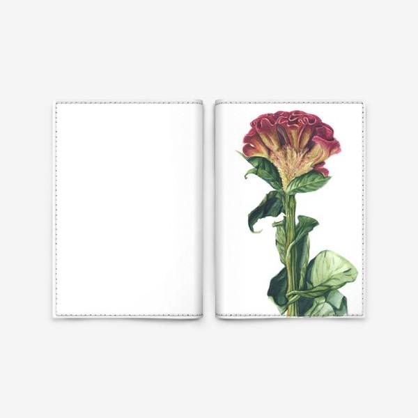 Обложка для паспорта «Цветок целозия»