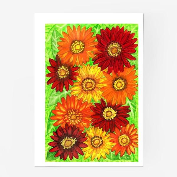 Постер «Фон из оранжевых ,красных и жёлтых гербер»