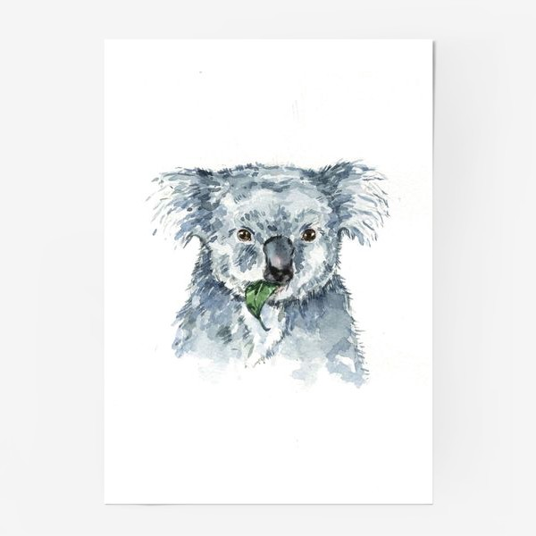 Постер «Милая коала»