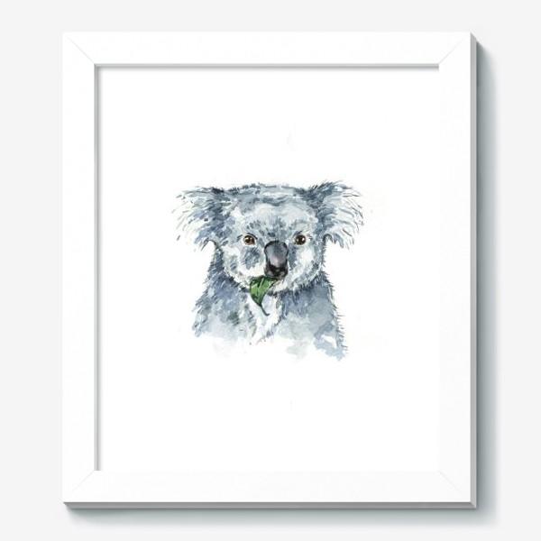Картина «Милая коала»