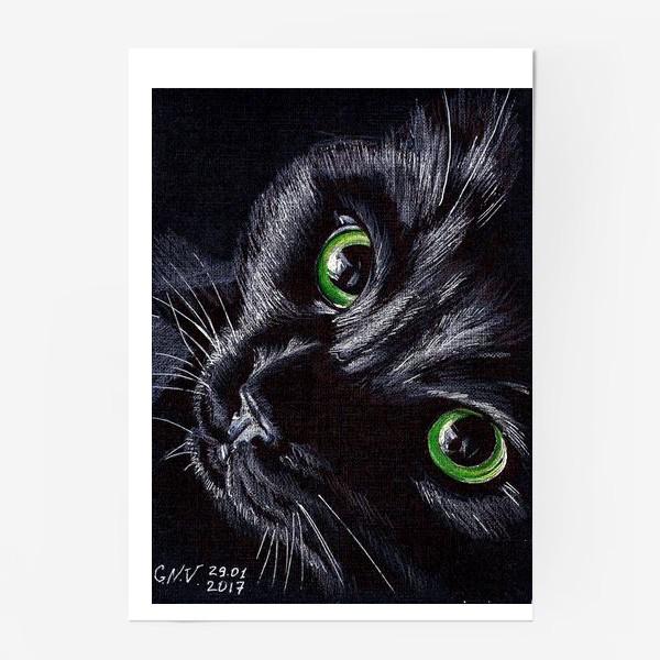 Постер «Черный кот»
