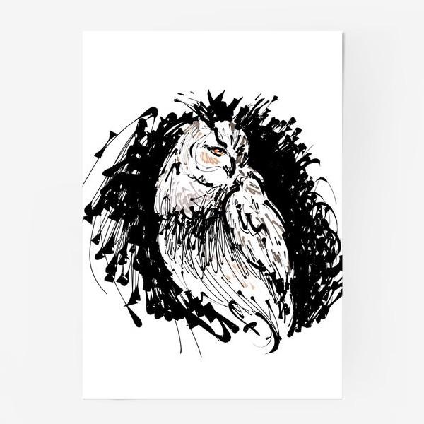 Постер «Сова с характером - выразительная графика»
