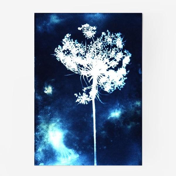 Постер «Полевой цветок»