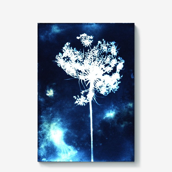 Холст «Полевой цветок»