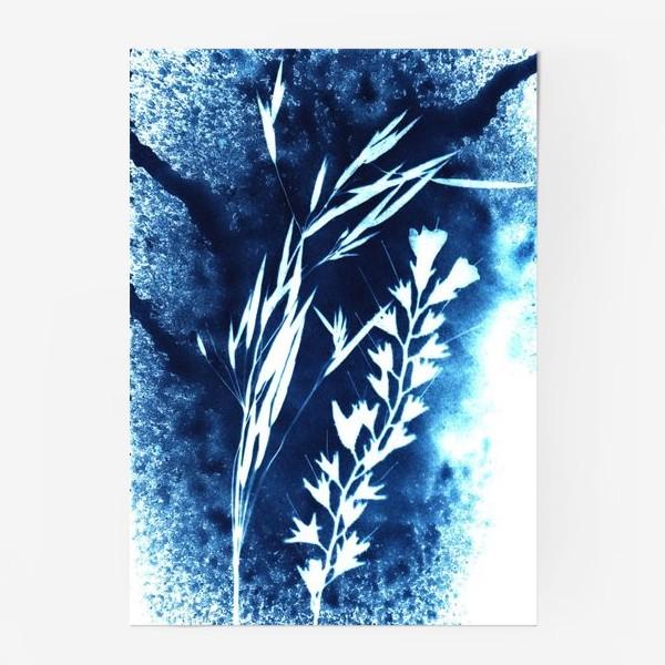 Постер «Травы»
