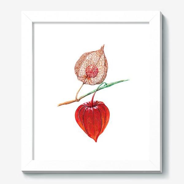 Картина «Сердце физалиса»