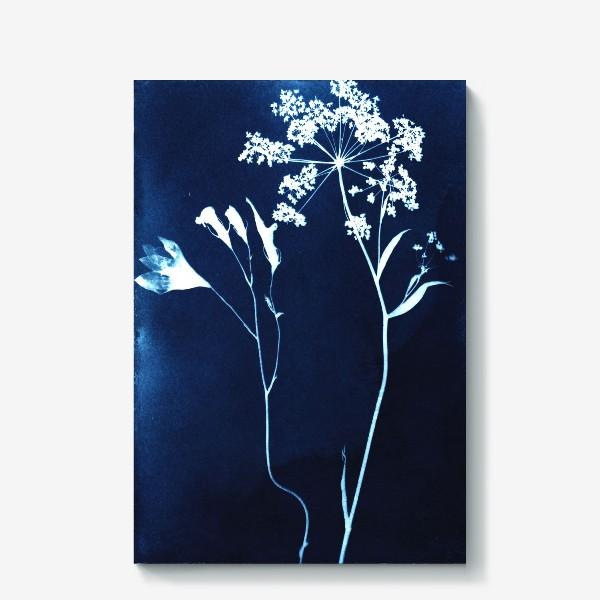 Холст «Сухие цветы »