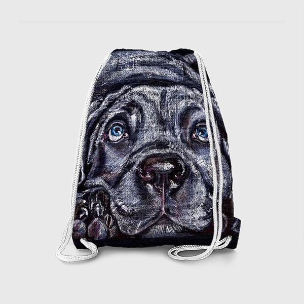 Рюкзак «Щенок Легавой »