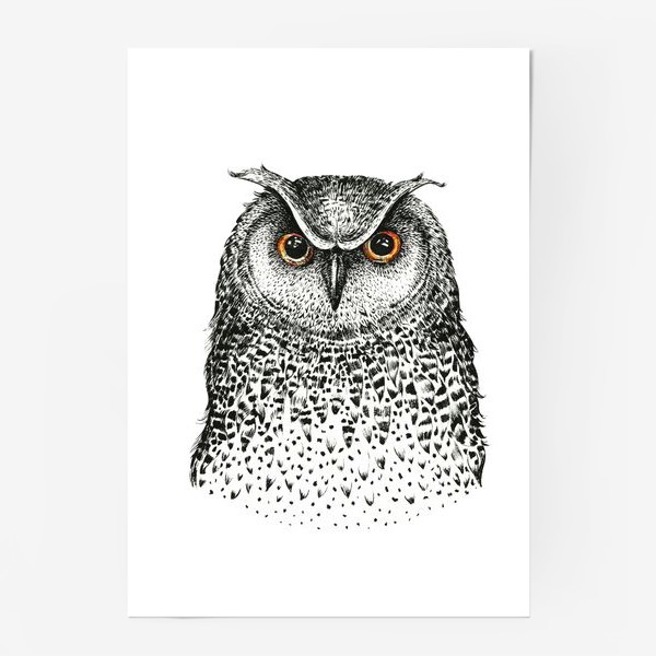 Постер «I love owls»