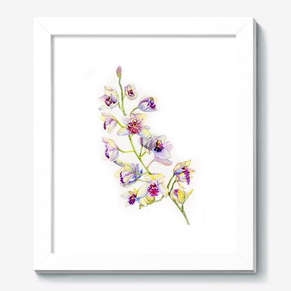 Картина «орхидейка»