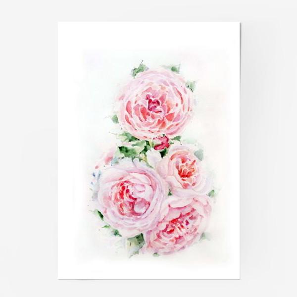Постер «Розы»