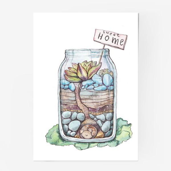 Постер «Банка с суккулентом. Домик для мышки»