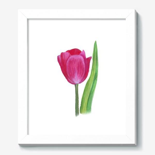 Картина «розовый тюльпан»