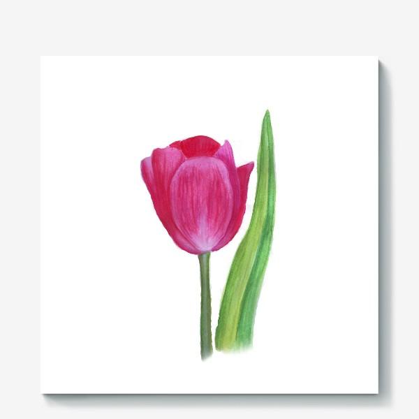Холст «розовый тюльпан»