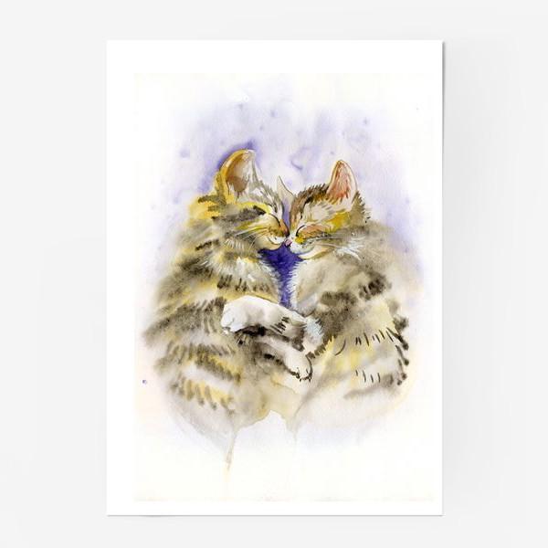 Постер «Котообнимашки»