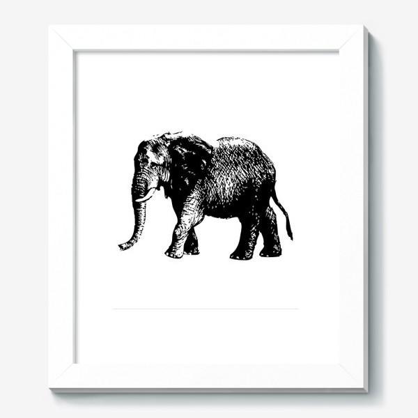 Картина «Принт слон графика»