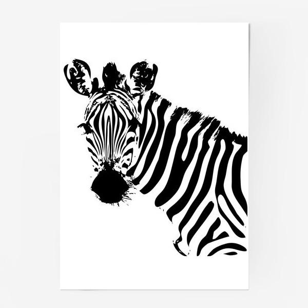 Постер «Паттерн зебра»