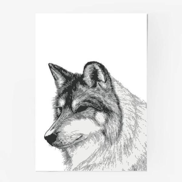 Постер «Принт Волк»