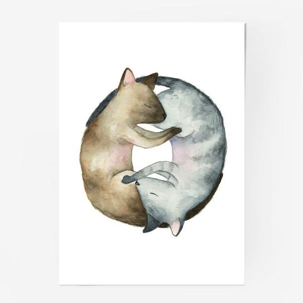 Постер «Спящие коты»