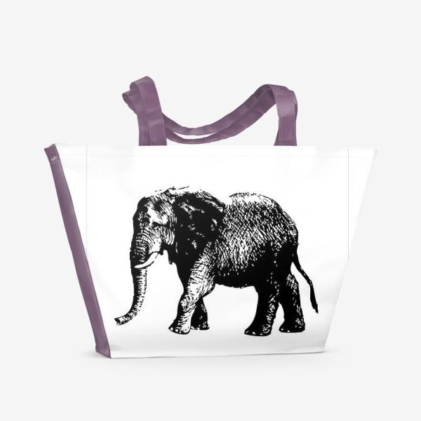 Пляжная сумка «Принт слон графика»