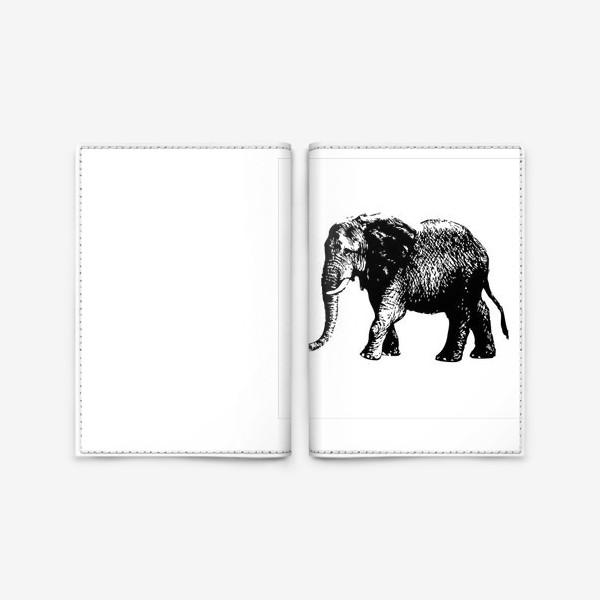 Обложка для паспорта «Принт слон графика»