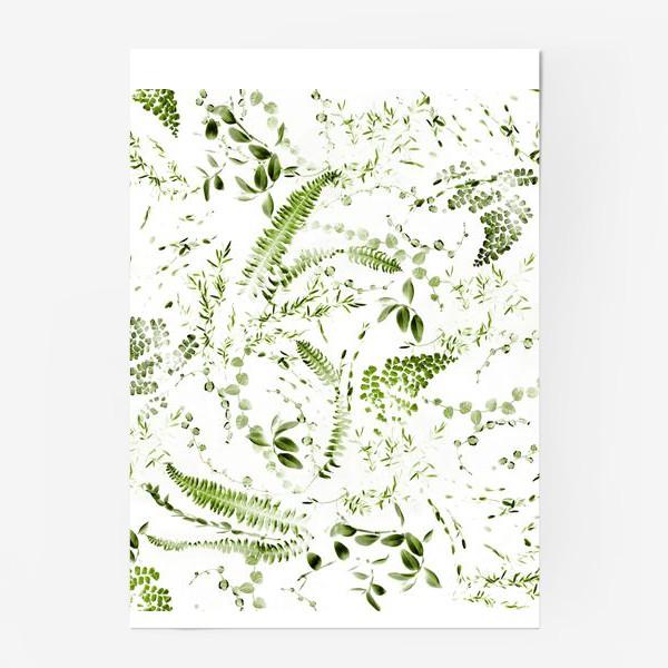 Постер «Зеленый растительный микс. Папоротники»