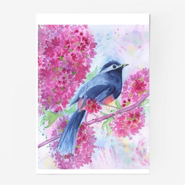 Постер «Птица на цветущей ветке»