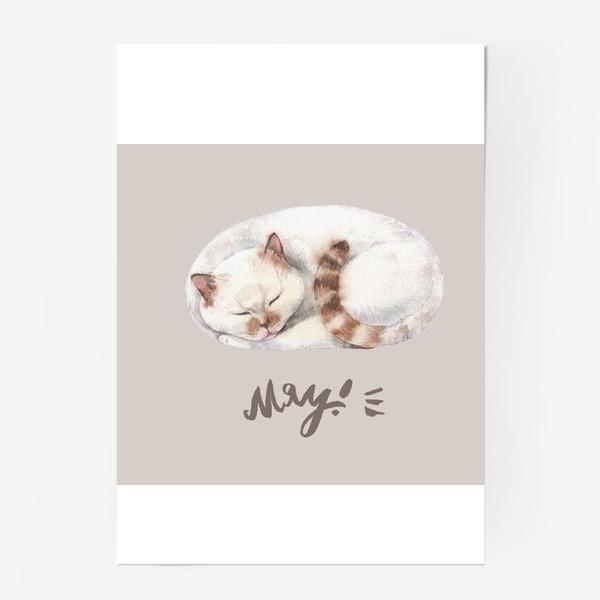 Постер «котя белый»