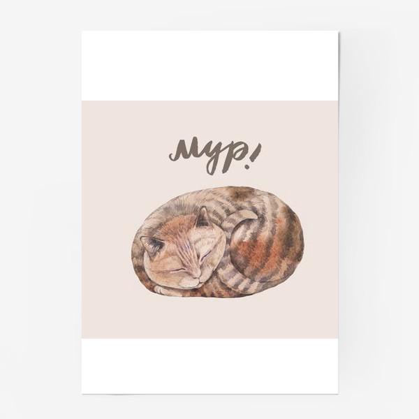 Постер «котя2»