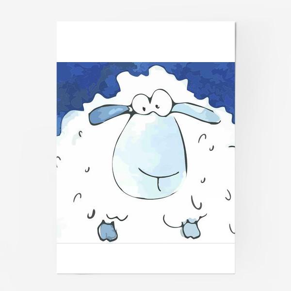 Постер «Кудрявая белая овечка»