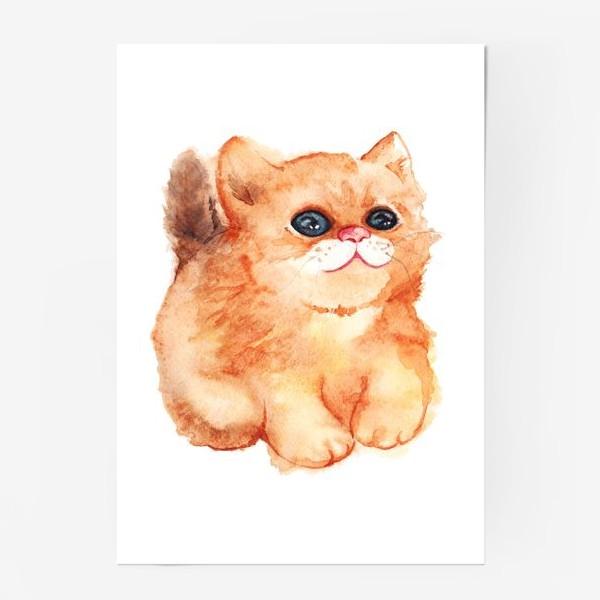 Постер «Акварельный рыжий пушистый кот с большими глазами»