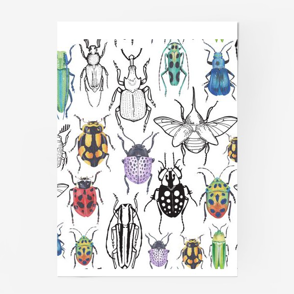 Постер «Жуки и графика»