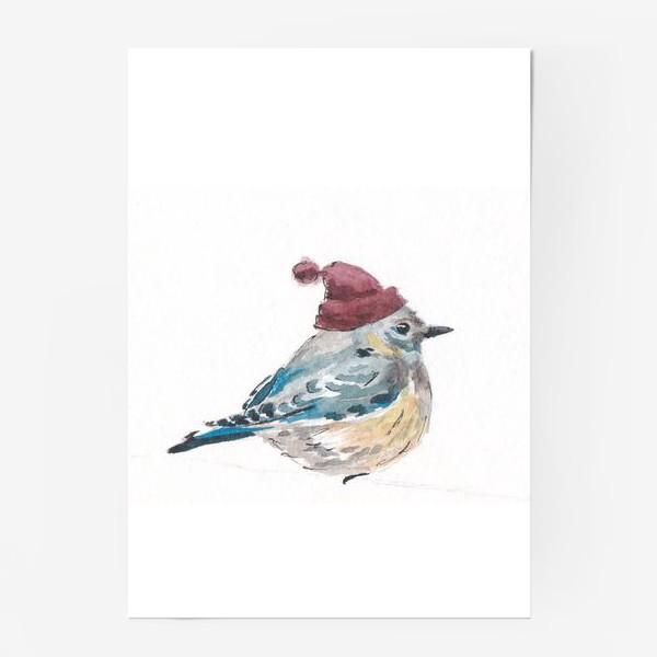 Постер «Птица в шапке»
