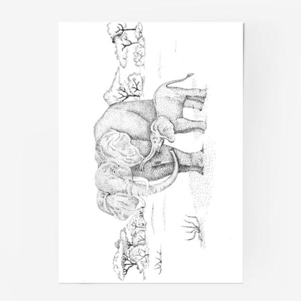Постер «Слоны»