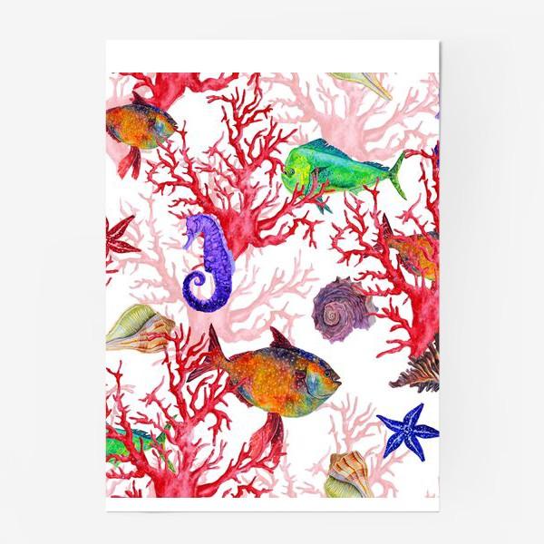 Постер «Морские жители, кораллы и ракушки»