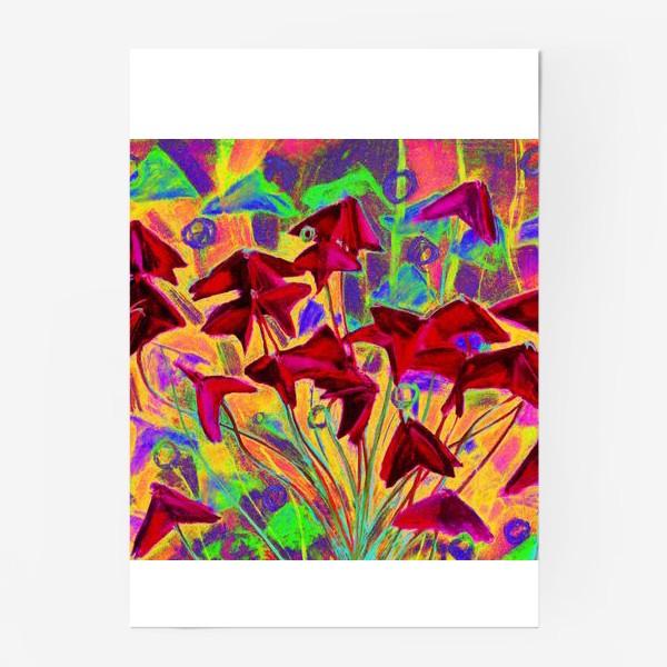 Постер «Оксалис / Кислица (психоделическая версия)»