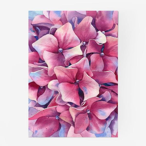 Постер « Розовая гортензия  »