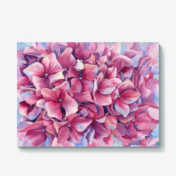 Холст « Розовая гортензия  »