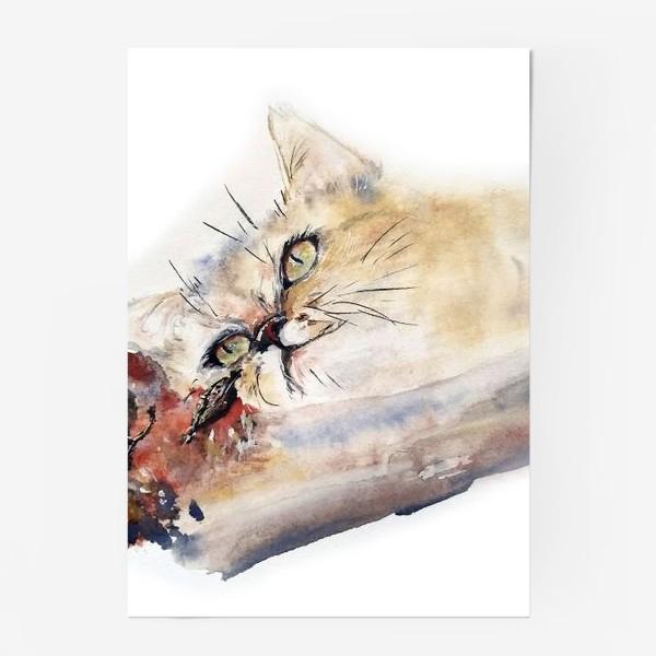 Постер «Кот осенний»