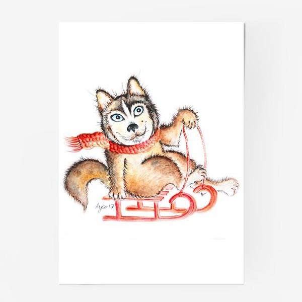Постер «Хаски. Салазки»